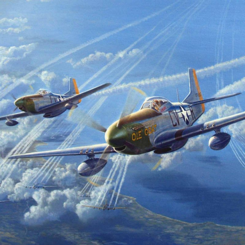 10 New P 51 Mustang Background FULL HD 1920×1080 For PC Desktop 2018 free download 33 north american p 51 mustang hd wallpapers background images 4 800x800