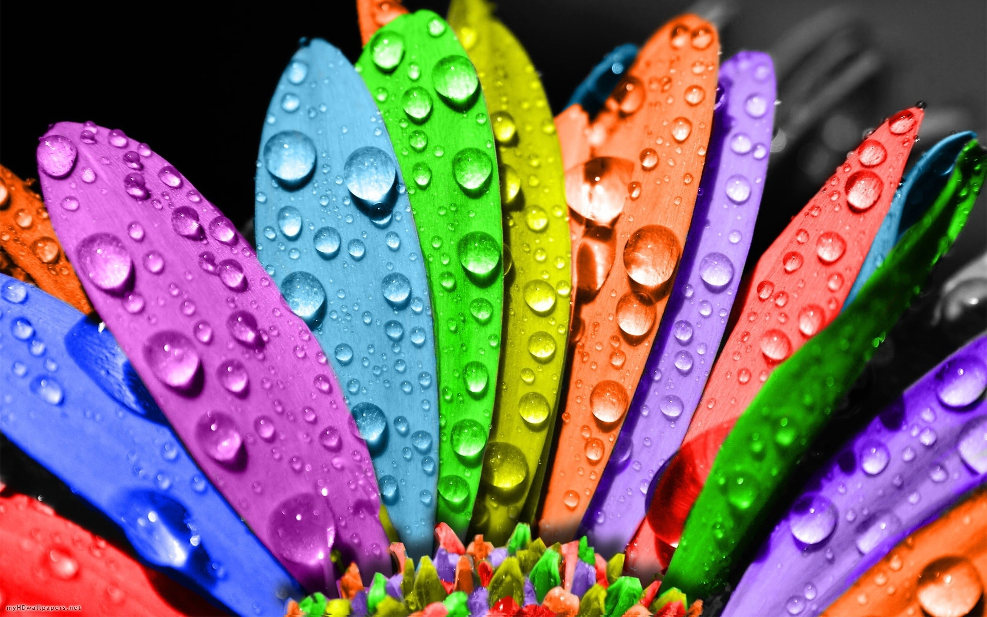 3d colorful wallpapers - wallpaper.wiki