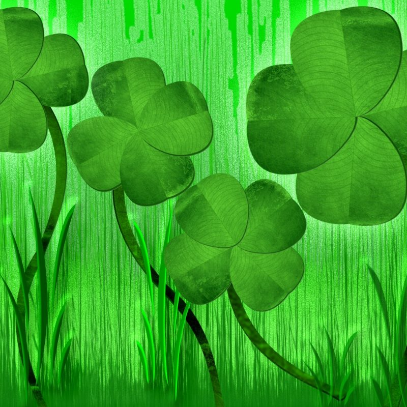 10 Most Popular 4 Leaf Clover Wallpaper FULL HD 1080p For PC Background 2018 free download 4 four leaf clover onlookin 1 800x800