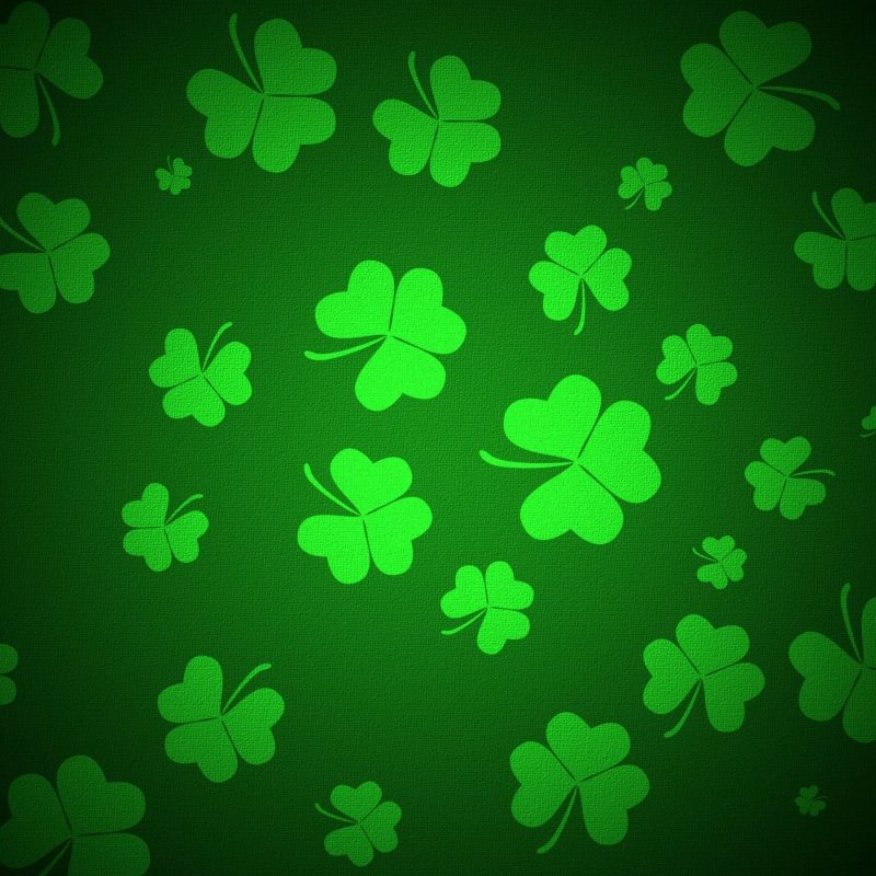 10 Most Popular 4 Leaf Clover Wallpaper FULL HD 1080p For PC Background 2018 free download 4 leaf clover wallpaper 46 images 1 800x800