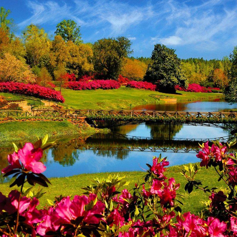 10 Top Beautiful Spring Desktop Backgrounds FULL HD 1080p For PC Desktop 2018 free download 40 beautiful nature wallpapers wallpapers pinterest spring 2 800x800