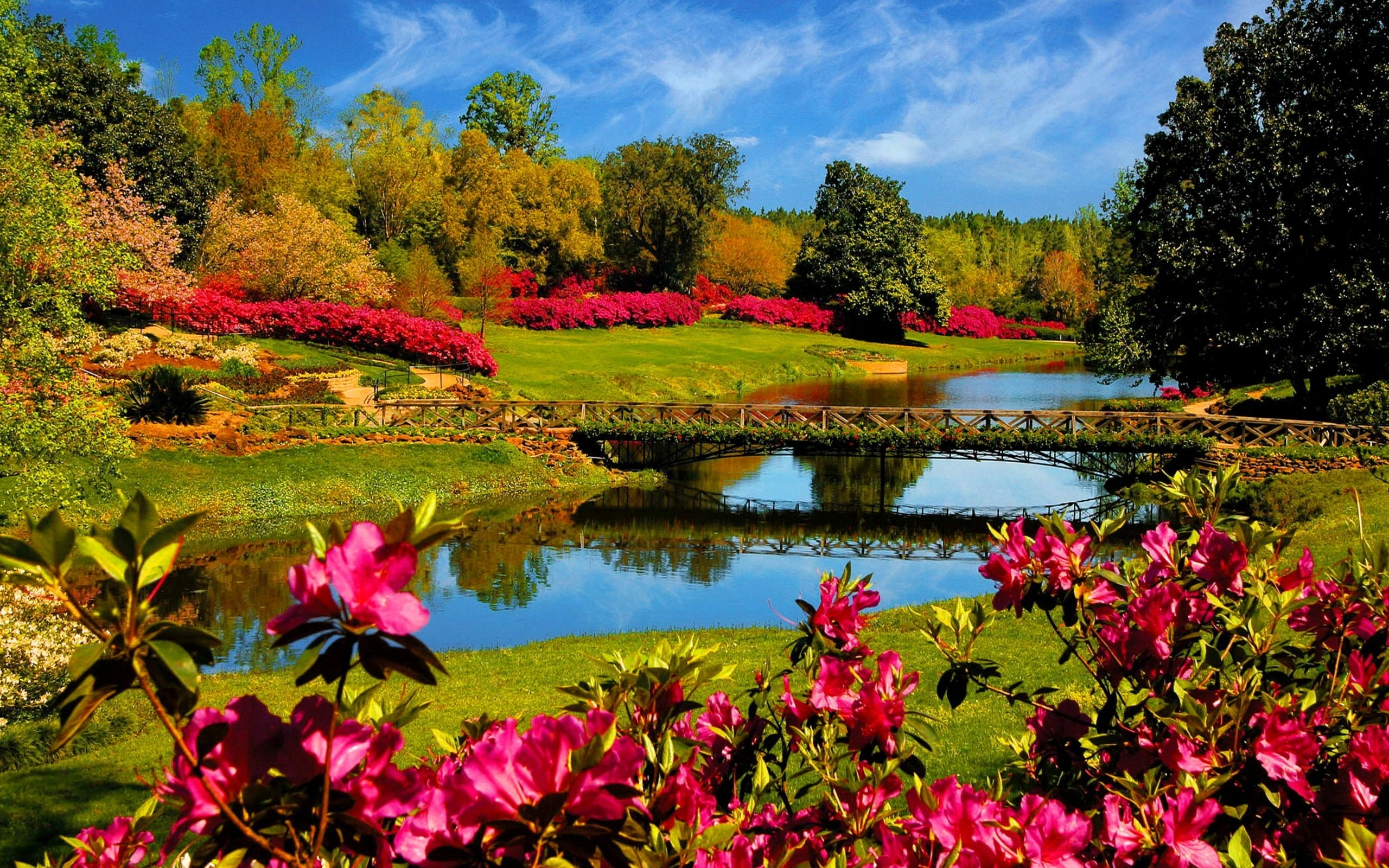 40+ beautiful nature wallpapers | wallpapers | pinterest | spring
