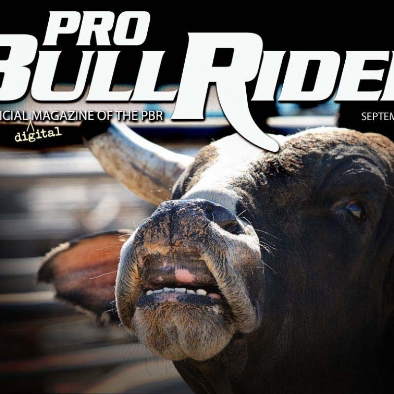 10 Top Professional Bull Riders Wallpaper FULL HD 1920×1080 For PC Background 2021 free download 45 pbr wallpapers 800x800