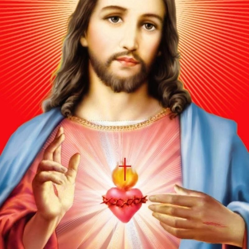 10 Latest Pictures Of The Sacred Heart Of Jesus FULL HD 1080p For PC Desktop 2021 free download 467 best sacred heart of jesus images on pinterest sacred heart 3 800x800