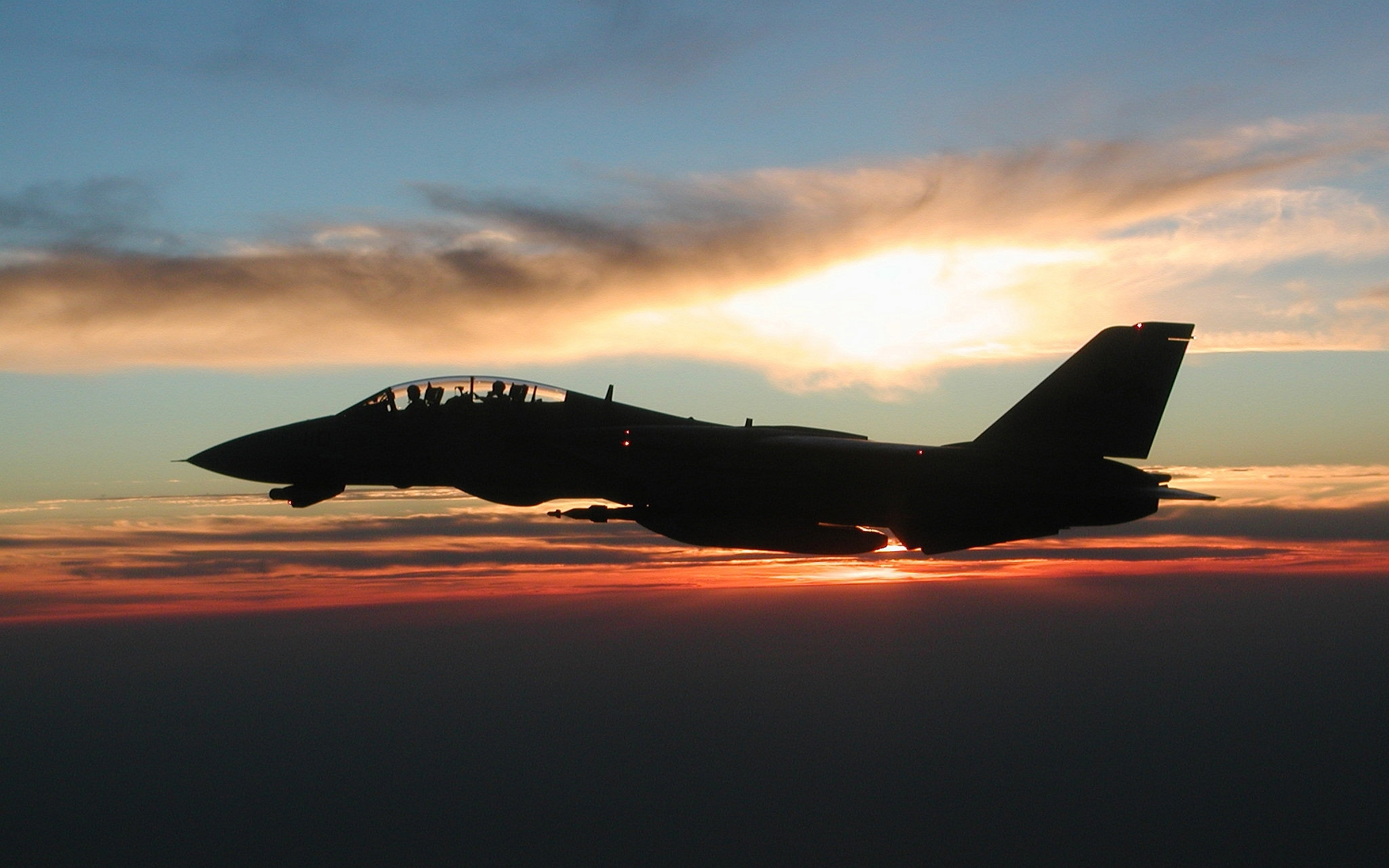 49 grumman f-14 tomcat hd wallpapers | background images - wallpaper