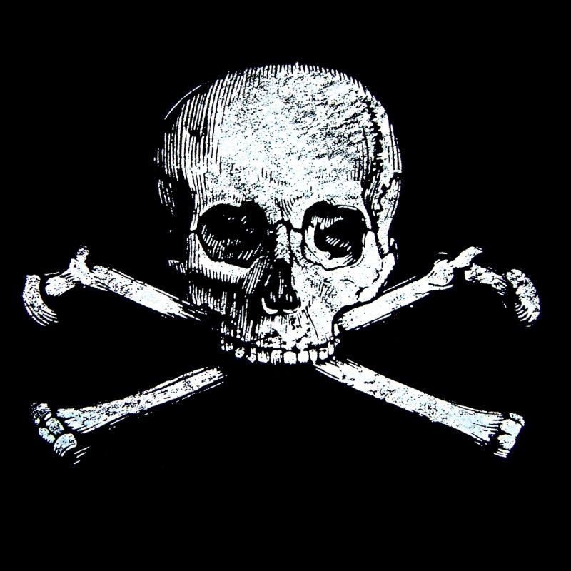 10 New Skull And Bones Wallpaper FULL HD 1920×1080 For PC Background 2021 free download 49 skull and bones wallpaper 800x800