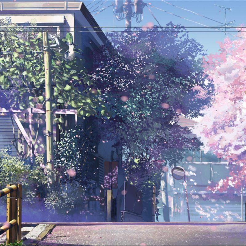 10 Best 5 Cm Per Second Wallpaper FULL HD 1920×1080 For PC Desktop 2021 free download 5 centimeters per second wallpaper zerochan anime image board 1 800x800