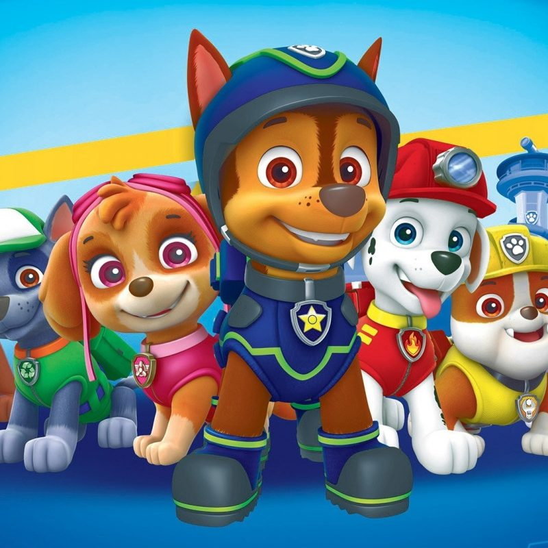 10 Best Paw Patrol Desktop Wallpaper FULL HD 1920×1080 For PC Desktop 2021 free download 5 paw patrol hd wallpapers background images wallpaper abyss 800x800