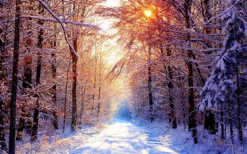 10 Most Popular Snowy Winter Scene Wallpaper FULL HD 1920×1080 For PC Desktop 2021 free download 53 snowy scene wallpapers on wallpaperplay 800x500
