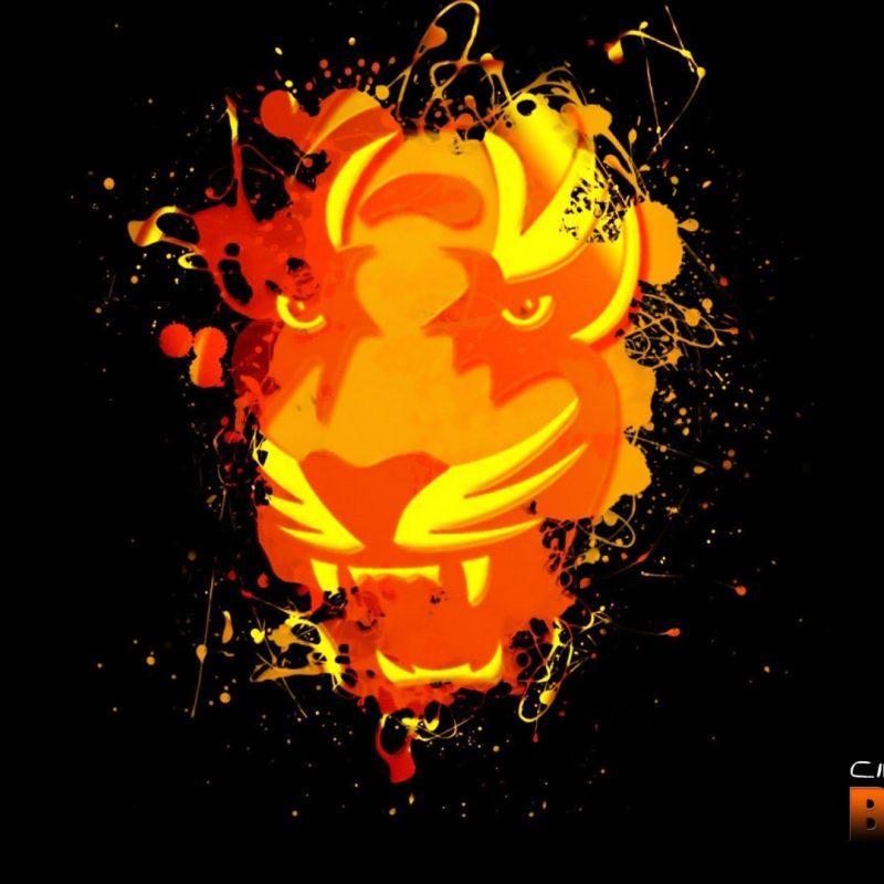 10 New Cincinnati Bengals Hd Wallpaper FULL HD 1080p For PC Background 2020 free download 55 cincinnati bengals hd wallpapers background images wallpaper 800x800