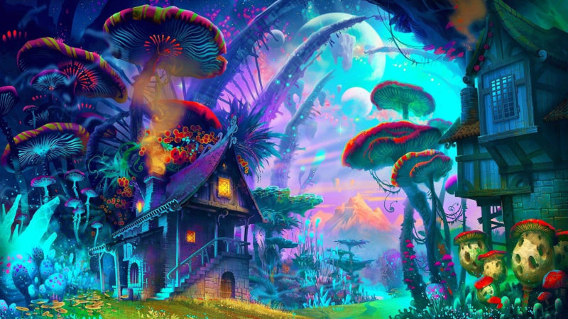 10 Top Magic Mushroom Wallpaper FULL HD 1080p For PC Background 2020 free download 57 shrooms wallpapers on wallpaperplay 800x450