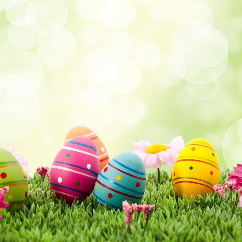 10 Top Happy Easter Wallpaper Hd FULL HD 1920×1080 For PC Desktop 2021 free download 649 easter hd wallpapers background images wallpaper abyss 1 800x800