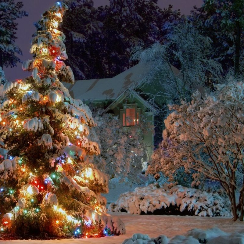 Fantastic 10 Best Free Winter Holiday Desktop Wallpaper Full Hd 1080P Home Interior And Landscaping Eliaenasavecom