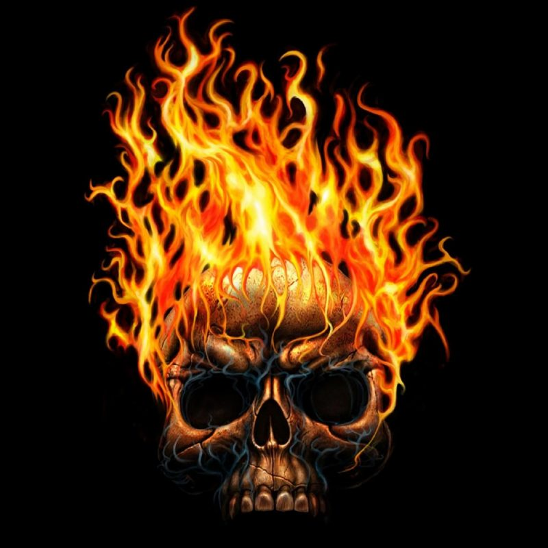 10 Best Skulls And Flames Wallpaper FULL HD 1080p For PC Background 2018 free download 730 skull hd wallpapers background images wallpaper abyss 800x800