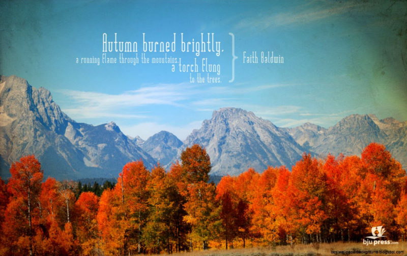 10 New Fall Scripture Wallpaper FULL HD 1080p For PC Desktop 2021 free download 9205 fall wallpaper with scripture verses 800x505
