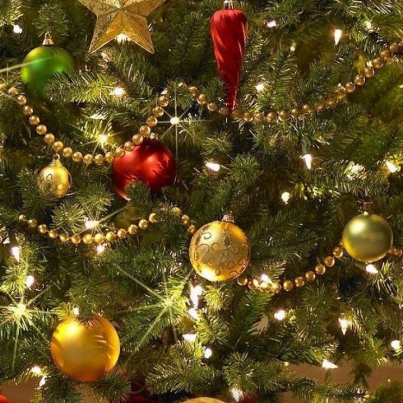10 Best Christmas Tree Phone Wallpaper FULL HD 1080p For PC Background 2021 free download 96 best seasons trees images on pinterest christmas time merry 800x800