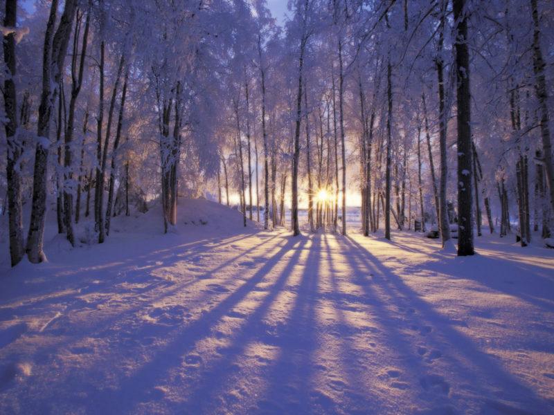 10 Best Winter Scenes For Desktop FULL HD 1080p For PC Desktop 2021 free download 9685 winter scene desktop background 800x600