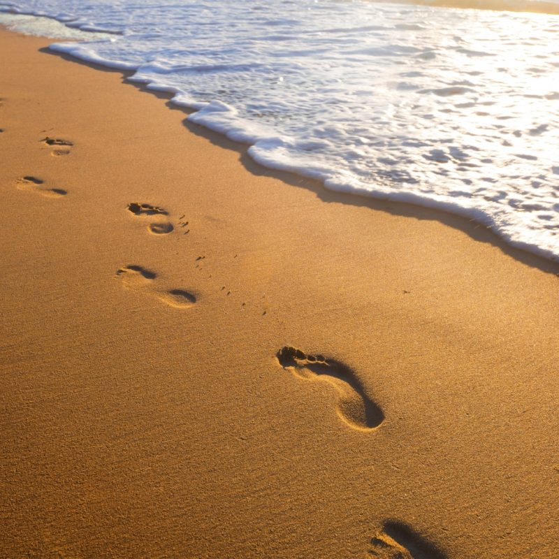 10 Top Footprints In The Sand Pictures FULL HD 1920×1080 For PC Desktop 2020 free download a new take on the old poem footprints in the sand faith radio 800x800