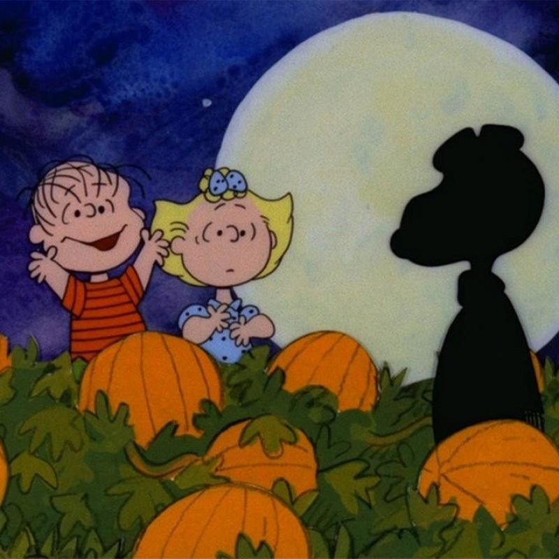 10 New Great Pumpkin Charlie Brown Pictures FULL HD 1920×1080 For PC Background 2021 free download abcs halloween schedule begins with its the great pumpkin 800x800