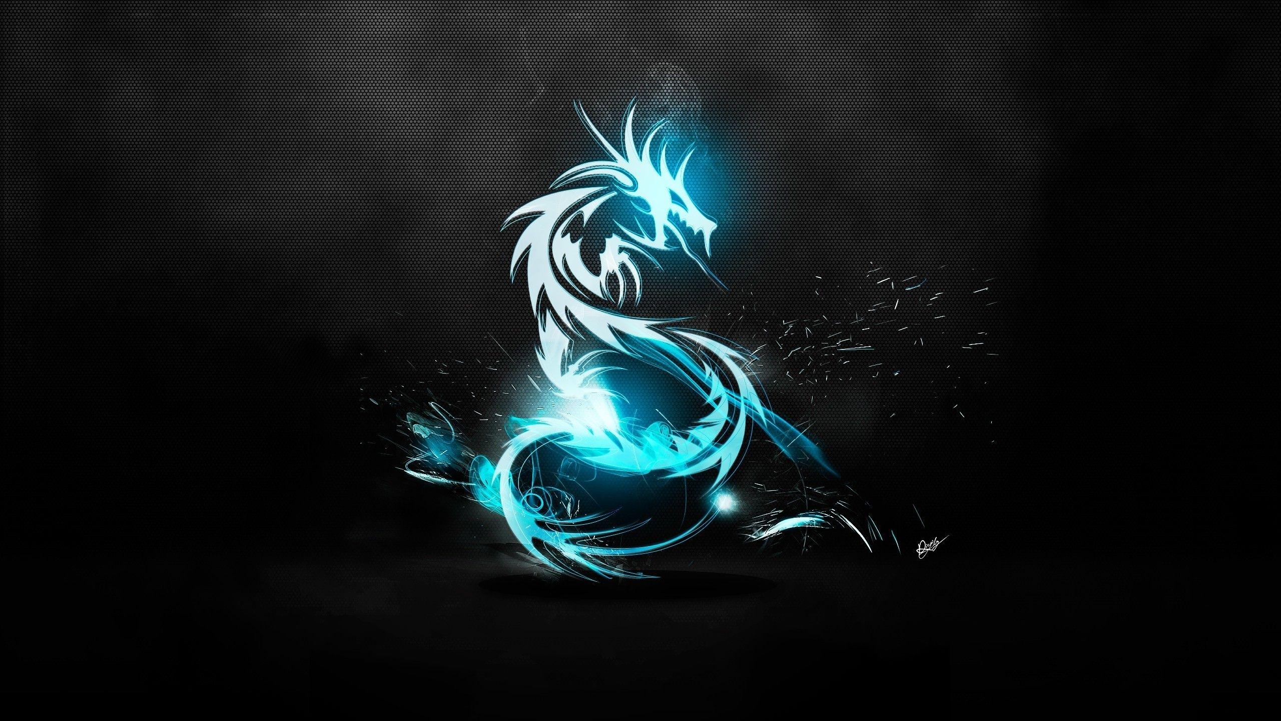 abstract blue blue dragon logos amd black background / 2560x1440