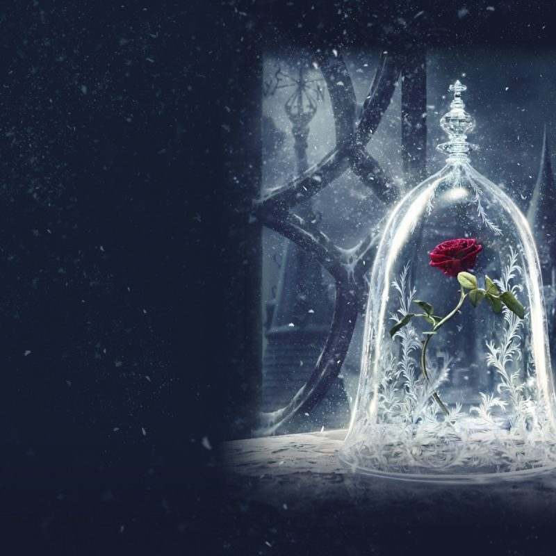 10 Best Beauty And The Beast Wallpaper FULL HD 1920×1080 For PC Background 2020 free download add some magic to your devices with these beauty and the beast 1 800x800