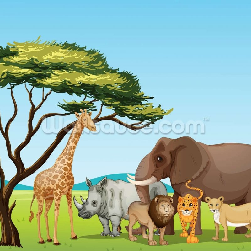 10 Best African Safari Animals Wallpaper FULL HD 1920×1080 For PC Desktop 2020 free download african safari cartoon wallpaper wall mural wallsauce new zealand 800x800
