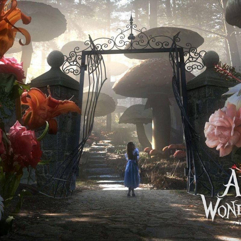 10 Most Popular Alice In Wonderland Hd Wallpaper FULL HD 1080p For PC Desktop 2018 free download alice in wonderland wallpapers wallpaper cave 800x800