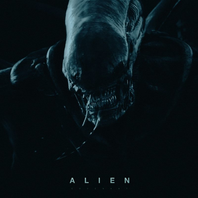 10 New Alien Covenant Hd Wallpaper FULL HD 1920×1080 For PC Background 2020 free download alien covenant wallpapers wallpaper cave 800x800