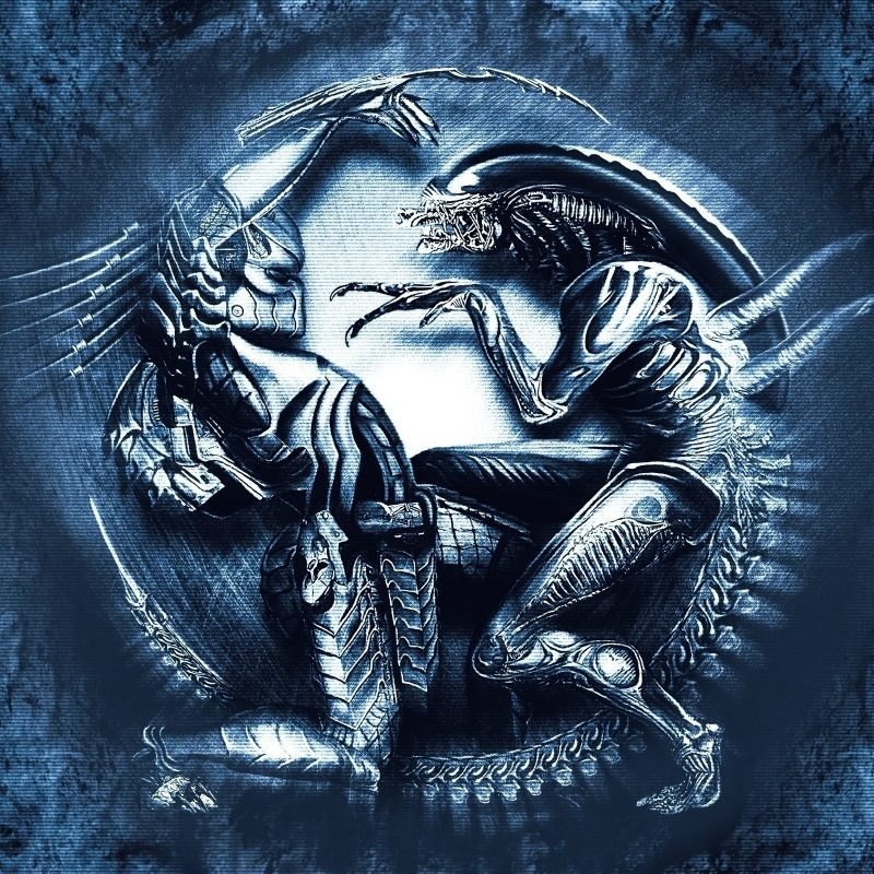 10 New Alien Vs Predator Wallpaper FULL HD 1080p For PC Background 2018 free download alien vs predator full hd fond decran and arriere plan 2560x1600 800x800
