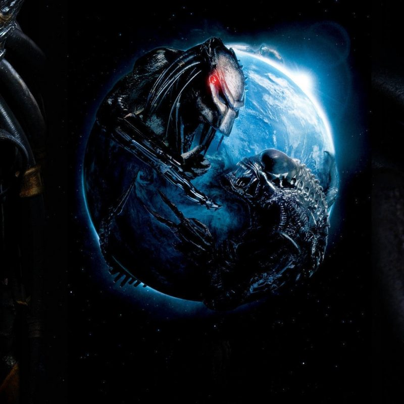 10 New Alien Vs Predator Wallpaper FULL HD 1080p For PC Background 2018 free download alien vs predator wallpapers hd wallpapers id 10928 800x800