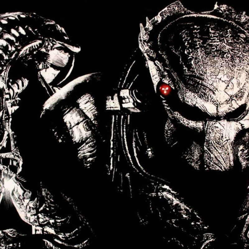 10 New Alien Vs Predator Wallpaper FULL HD 1080p For PC Background 2018 free download alien vs predator wallpapers wallpaper cave 800x800