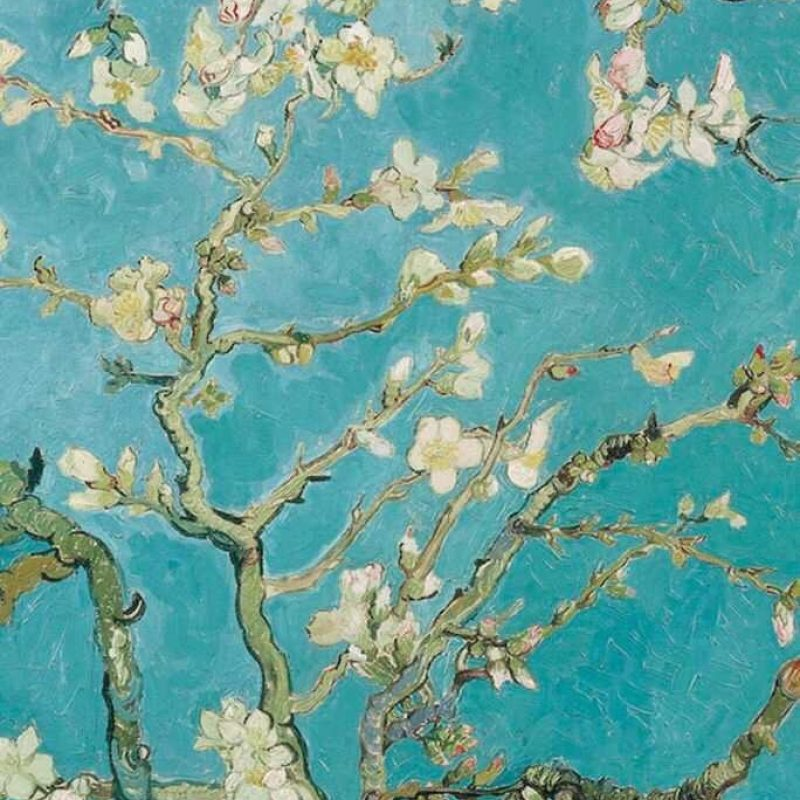 10 Top Van Gogh Almond Blossoms Wallpaper FULL HD 1920×1080 For PC Background 2018 free download almond blossom wallpaper iphone wallpaper pinterest almonds 800x800