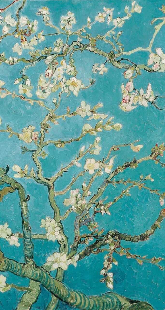 almond blossom wallpaper | iphone wallpaper | pinterest | almonds