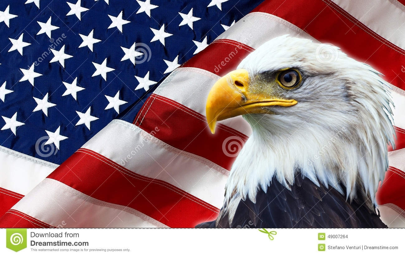 american eagle flag stock photos - download 856 images