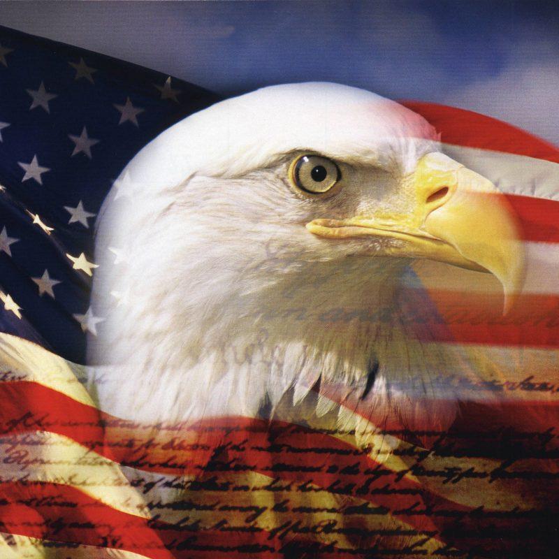 10 Latest Usa Flag Eagle Wallpaper FULL HD 1920×1080 For PC Background 2020 free download american eagle wallpaper hd yodobi 800x800