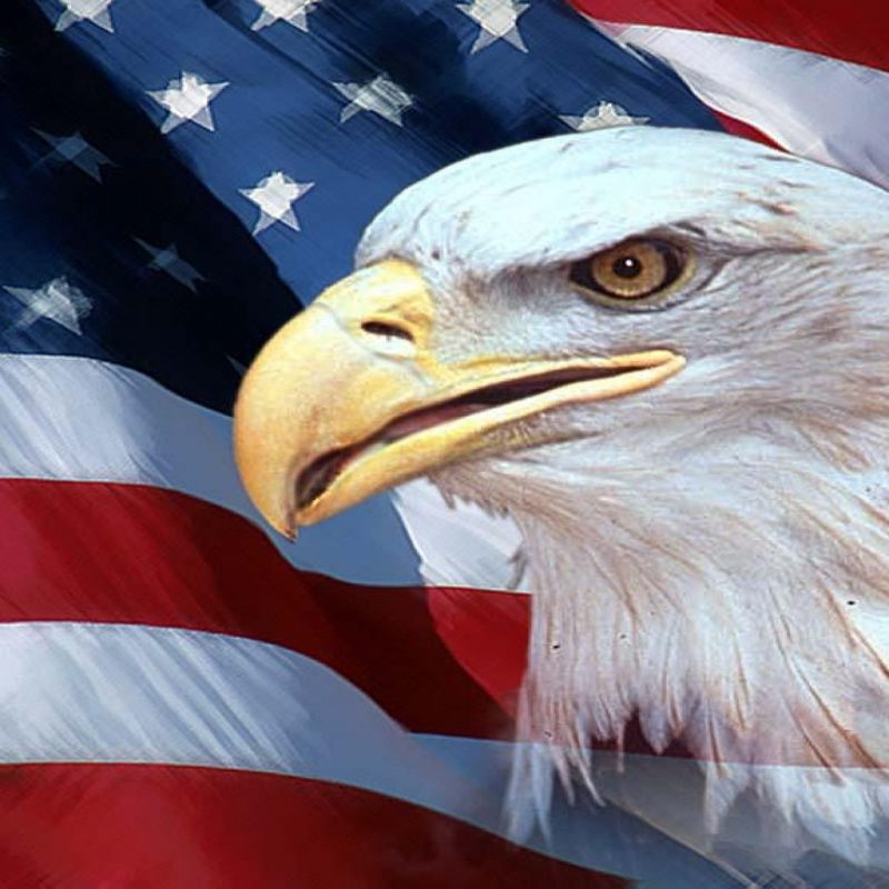 10 New American Flag With Eagle Background FULL HD 1920x1080 For PC 2018