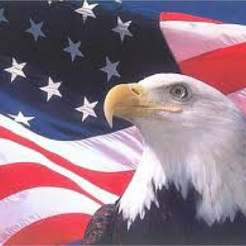 10 Most Popular American Flag Eagle Background FULL HD 1080p For PC Background 2020 free download american flag background with eagle 13 background check all 800x800