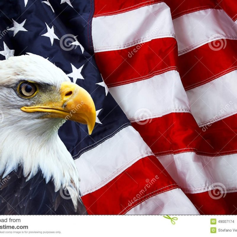 10 New American Flag With Eagle Background FULL HD 1920×1080 For PC Background 2018 free download american flag stock images download 66758 photos 800x800