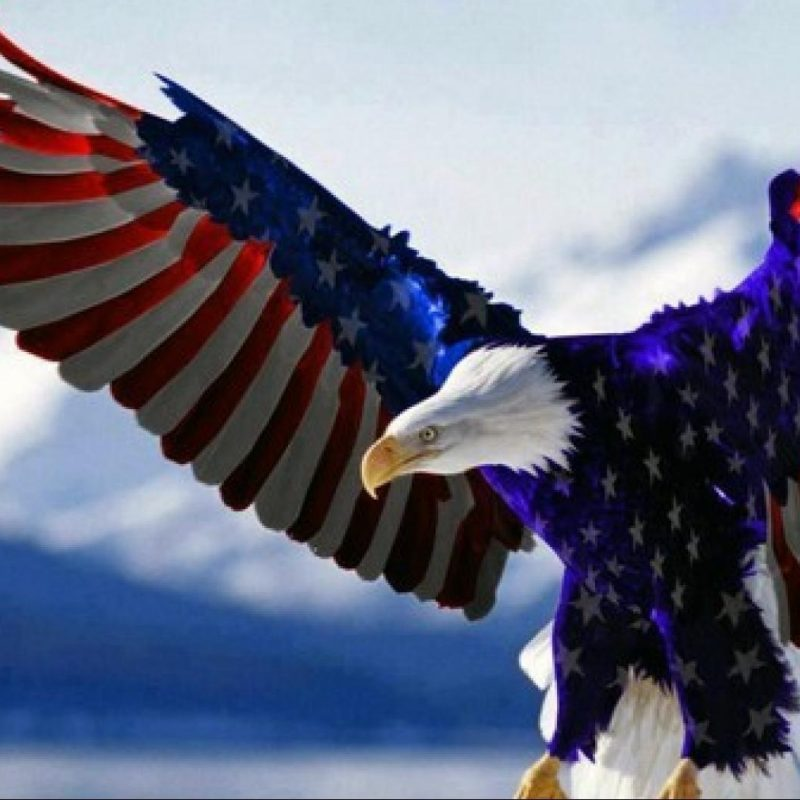 10 Latest Usa Flag Eagle Wallpaper FULL HD 1920×1080 For PC Background 2020 free download american flag wallpaper desktop wallpaper gallery 1 800x800
