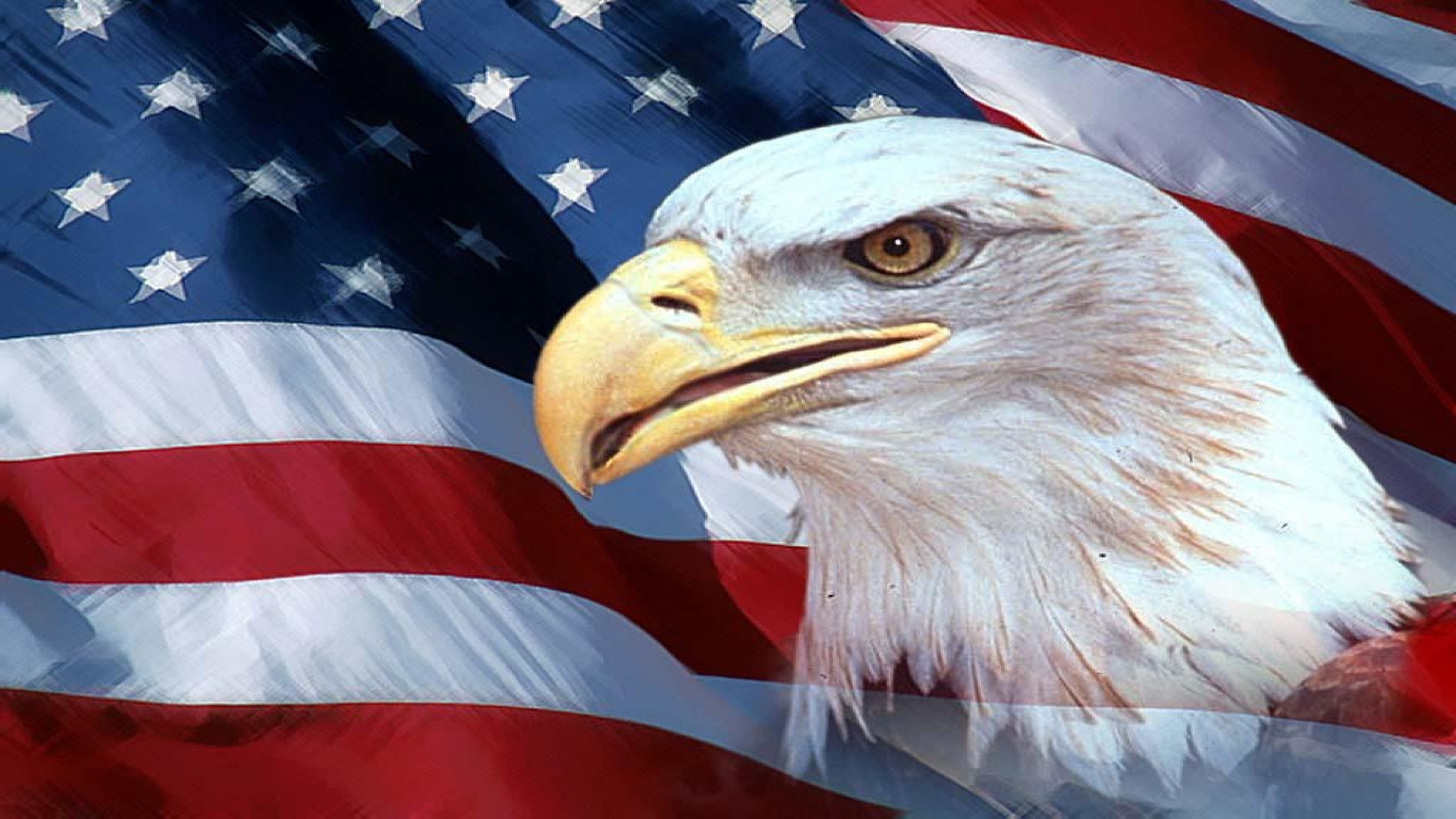 american flag with eagle wallpaper (70+ images)