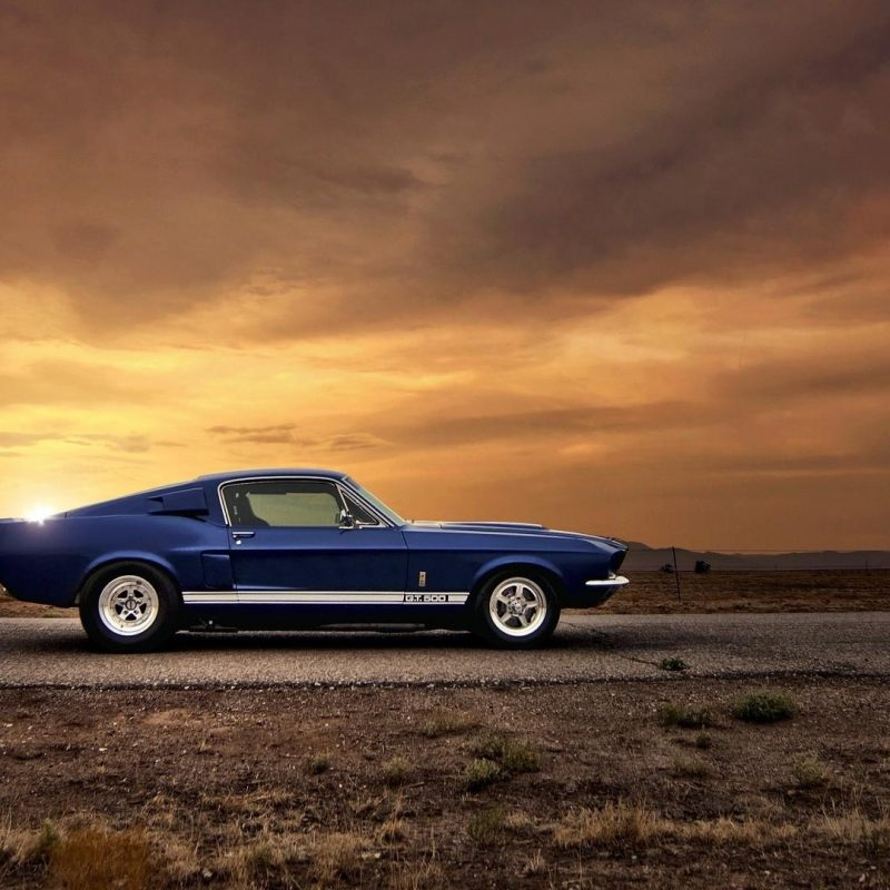 10 Top American Muscle Cars Wallpapers FULL HD 1920×1080 For PC Background 2018 free download american muscle car ford mustang gt500 shelby cars wallpaper 42271 800x800
