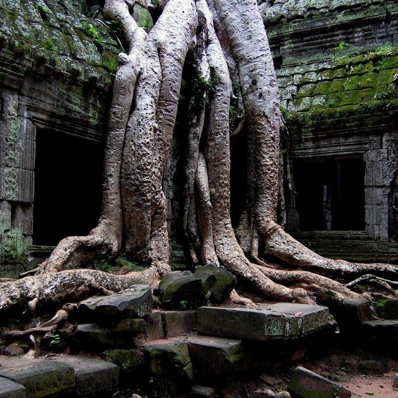 10 Latest Angkor Wat Hd Wallpaper FULL HD 1920×1080 For PC Background 2021 free download angkor wat temple cambodia e29da4 4k hd desktop wallpaper for 4k ultra 800x800