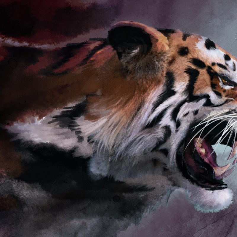 10 New Angry Tiger Wallpaper Hd 1080P FULL HD 1920×1080 For PC Desktop 2018 free download angry tiger painting e29da4 4k hd desktop wallpaper for 4k ultra hd tv 800x800