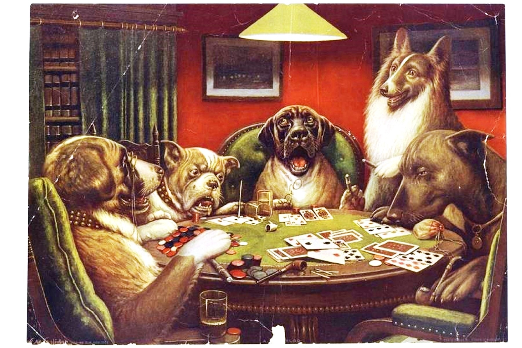animal – animal acting human – dogs playing cards | vintage