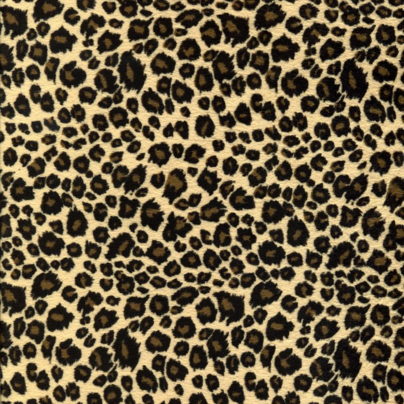 10 New Leopard Print Wallpaper Hd FULL HD 1080p For PC Background 2020 free download animal print desktop wallpaper background wallpaper 800x800