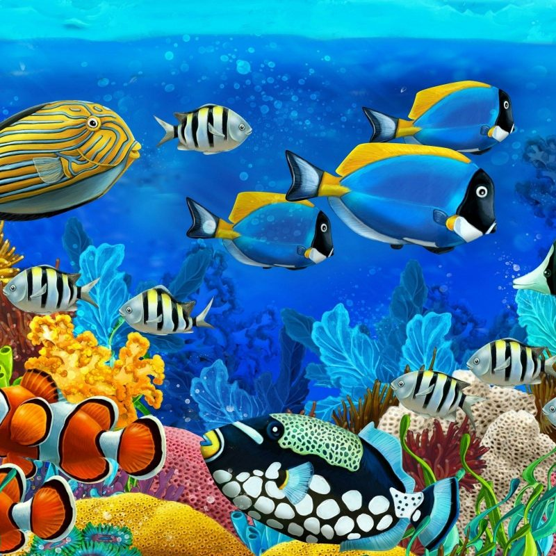10 Latest Desktop Backgrounds Ocean Life FULL HD 1920×1080 For PC Background 2020 free download animal sea life wallpapers desktop phone tablet awesome 1 800x800