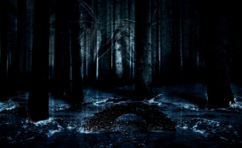 10 Most Popular Dark Enchanted Forest Background FULL HD 1920×1080 For PC Background 2021 free download animated dark forest backgrounds wallpapers background 800x490