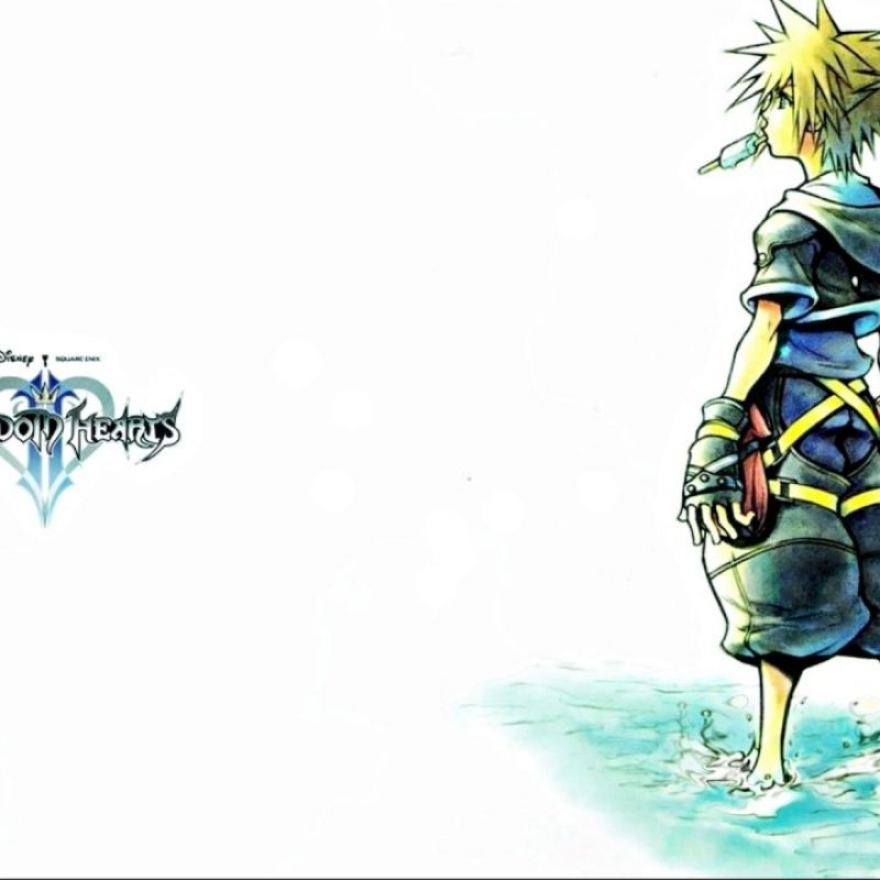 10 Latest Kingdom Hearts 2 Wallpaper FULL HD 1080p For PC Background 2018 free download animated dearly beloved kingdom hearts ii wallpaper wallpaper 800x800