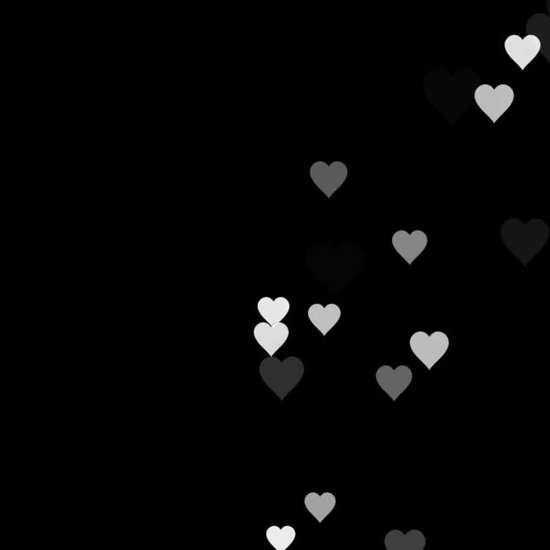 10 New White Heart Black Background FULL HD 1080p For PC Background 2021 free download animated many moving small white hearts useful greeting for wishing 800x800