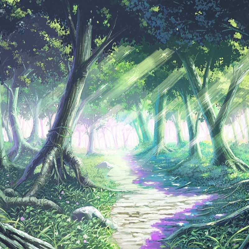 10 New Anime Forest Clearing Background FULL HD 1080p For PC Background 2020 free download anime forest background 69 images 800x800